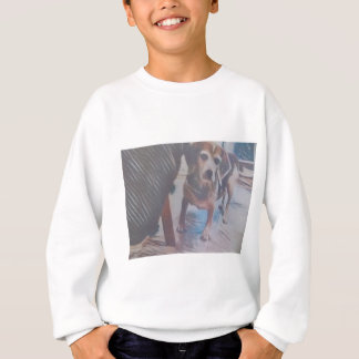 Curious Beagle Sweatshirt