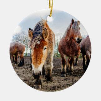 Curious Belgian Draft Horses From Below Ceramic Ornament