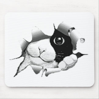 Curious Black and White Kitty Cat Mousepad