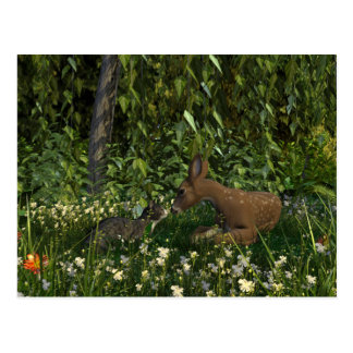 Curious Cat and Fawn Postcard