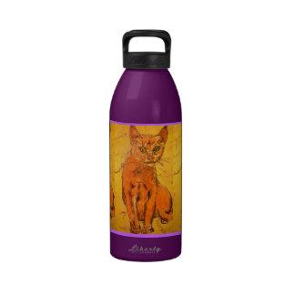 curious cat art drinking bottles