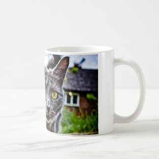 Curious Cat Basic White Mug