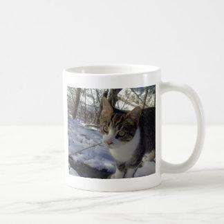 Curious Cat Basic White Mug