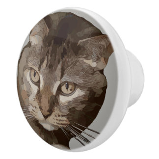 CURIOUS CAT CERAMIC KNOB