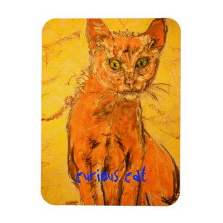 curious cat design rectangular photo magnet