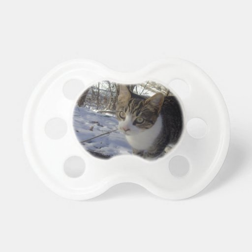 Curious Cat Baby Pacifiers