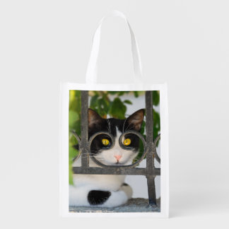 Curious Cat Eyes with Spectacles Frame Funny Photo Reusable Grocery Bag