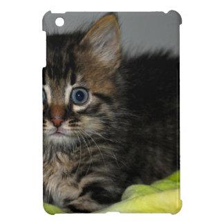 Curious Cat iPad Mini Cases