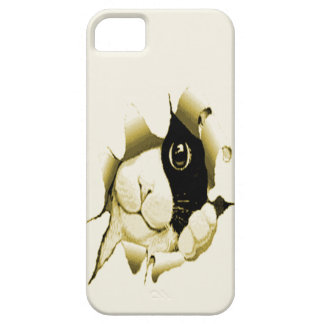 Curious Cat iPhone 5 Cover