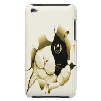 Curious Cat iPod Touch Covers