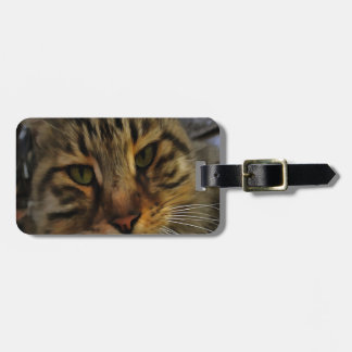 Curious Cat Luggage Tag