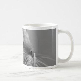 Curious cat coffee mug