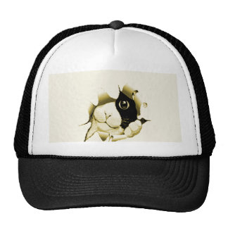 Curious Cat Peeking Out Trucker Hat