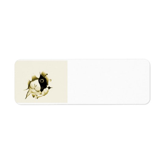 Curious Cat Return Address Label