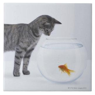 Curious cat watching goldfish in fishbowl ceramic tile