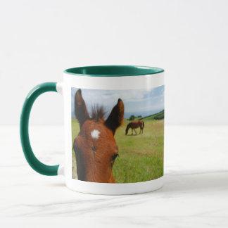 Curious colt mug
