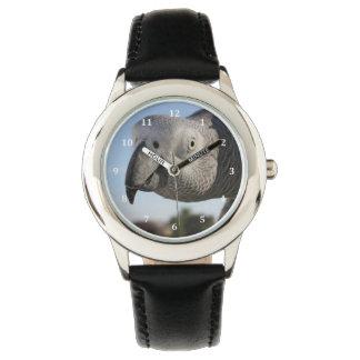 Curious Congo African Grey Parrot Wristwatches