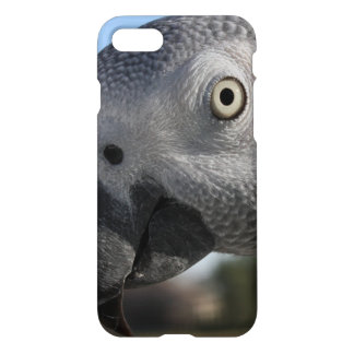 Curious Congo African Grey Parrot iPhone 7 Case