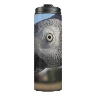 Curious Congo African Grey Parrot Thermal Tumbler