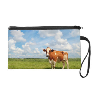 Curious cow standing on meadow wristlet clutch