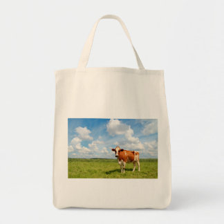 Curious cow standing on meadow canvas bags