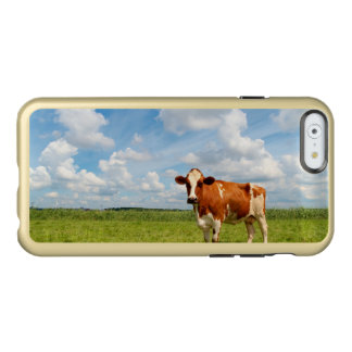 Curious cow standing on meadow. incipio feather® shine iPhone 6 case