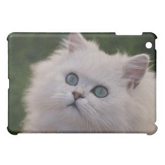 Curious cute white kitten case for the iPad mini