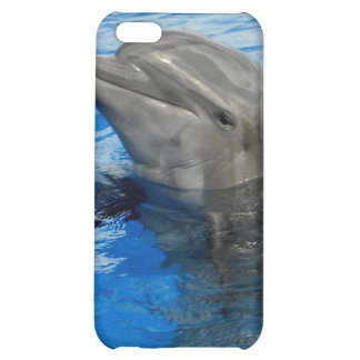 Curious Dolphin iPhone 5C Cases