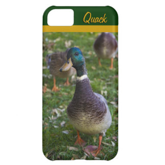 Curious Duck iPhone 5 Casemate Case iPhone 5C Case