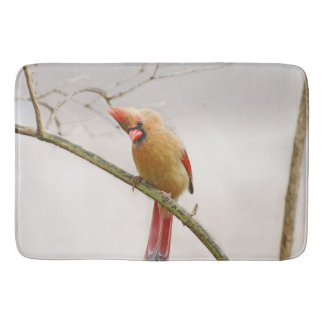 Curious Female Cardinal Bathmat