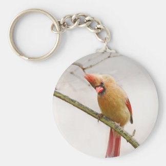 Curious Female Cardinal Keychain