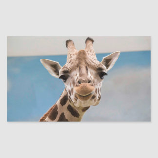Curious Giraffe Rectangular Sticker