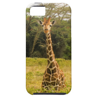Curious Giraffe Tough iPhone 5 Case