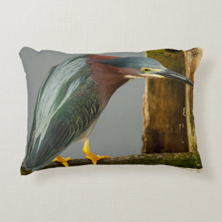 Curious Green Heron Pillow