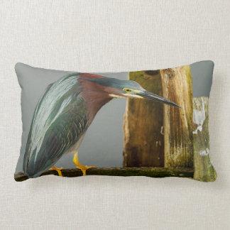 Curious Green Heron Throw Pillow