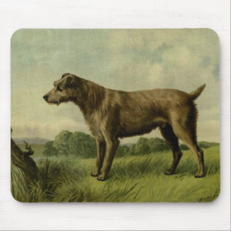 Curious Irish Terrier Mouse Pad