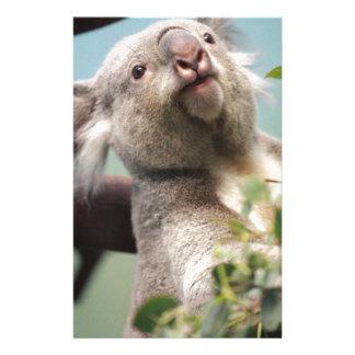 Curious Koala Bear Customized Stationery