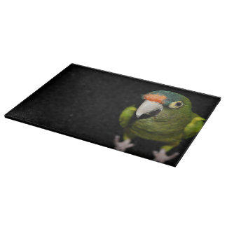 Curious parrot cutting board