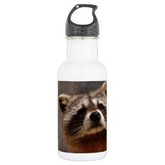Curious Raccoon 532 Ml Water Bottle