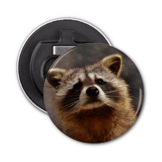 Curious Raccoon Bottle Opener