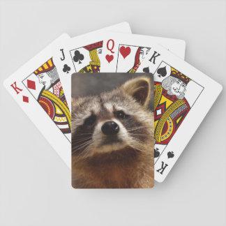 Curious Raccoon Playing Cards