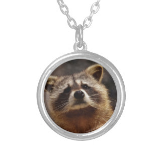 Curious Raccoon Silver Plated Necklace