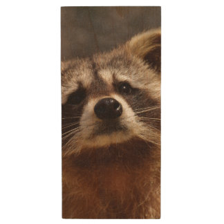 Curious Raccoon Wood USB 2.0 Flash Drive
