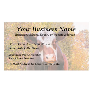 Curious Red Cow Business Card Template
