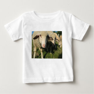 Curious sheep baby T-Shirt