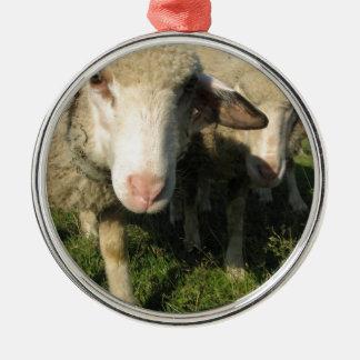 Curious sheep metal ornament