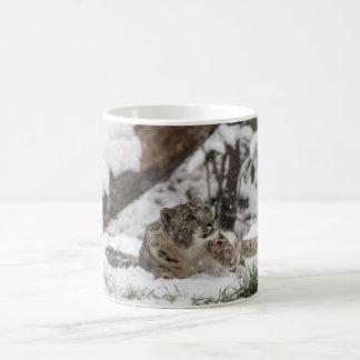 Curious Snow Leopard in Snow Coffee Mug