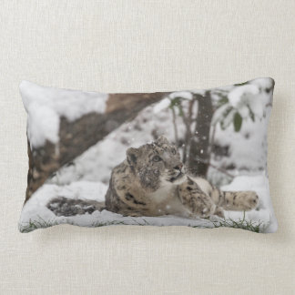Curious Snow Leopard in Snow Lumbar Cushion