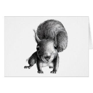 Curious Squirrel Card