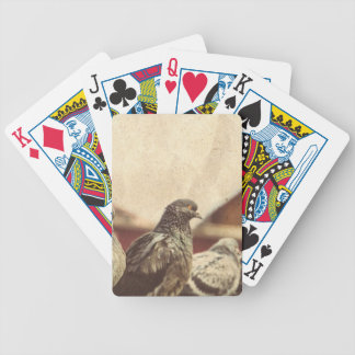 Curious Urban Pigeons Retro 3 Bicycle Playing Cards